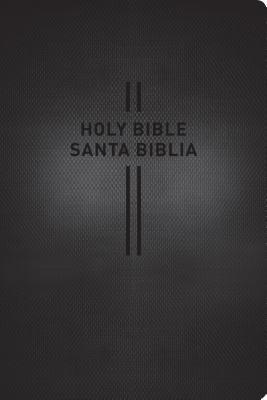 Image for Bilingual Bible / Biblia bilingüe NLT/NTV (English and Spanish Edition)