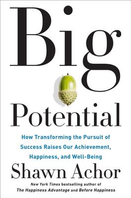 Image for Big Potential: How Transforming the Pursuit of Success Raises Our Achievement, Happiness, and Well-Being