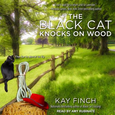 The Black Cat Knocks on Wood (Bad Luck Cat Mystery), Finch, Kay