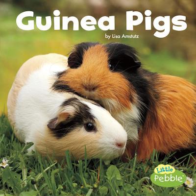 Guinea Pigs (Our Pets), Amstutz, Lisa J.