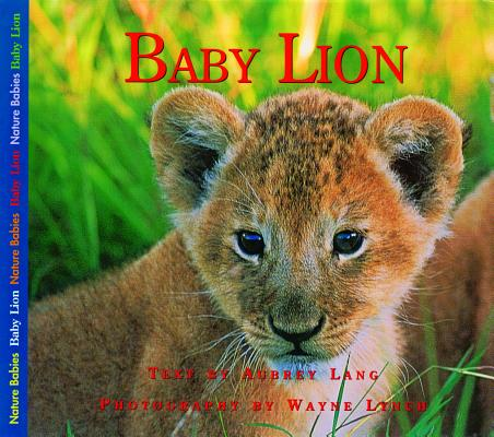 Image for Baby Lion (Nature Babies)