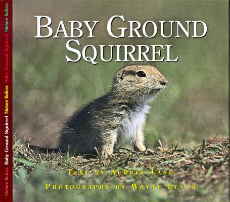 Image for Baby Ground Squirrel (Nature Babies)