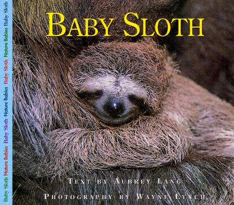 Image for Baby Sloth (Nature Babies)