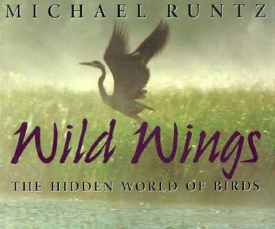 Image for Wild Wings: The Hidden World of Birds