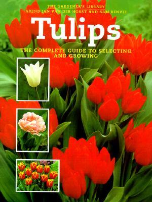 Tulips, Horst, Arend Jan Van Der; Benvie, Sam