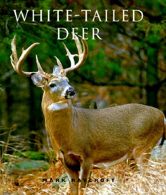 Image for White-Tailed Deer