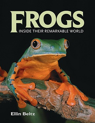 Image for Frogs: Inside Their Remarkable World