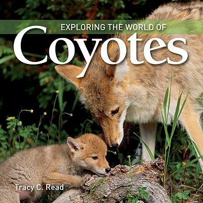 Image for Exploring the World of Coyotes