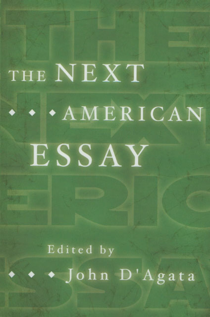 Image for The Next American Essay (A New History of the Essay)