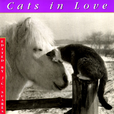 Image for Cats In Love