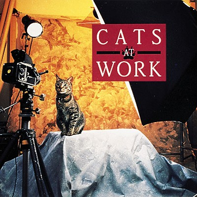 Image for Cats at Work