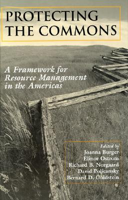 Image for Protecting the Commons: A Framework For Resource Management In The Americas