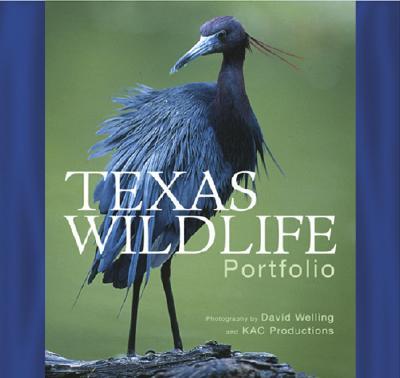 Image for Texas Wildlife Portfolio (Hardcover)