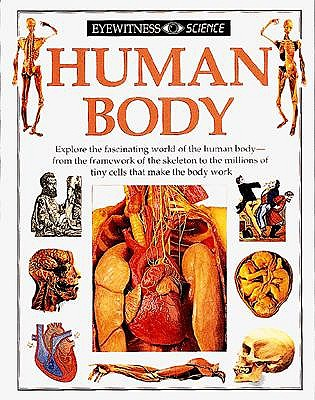 Image for Human Body (Eyewitness Science)