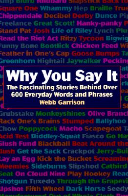 Image for WHY YOU SAY IT THE FASCINATING STORIES BEHIND OVER 600 EVERYDAY WORDS AND PHRASES