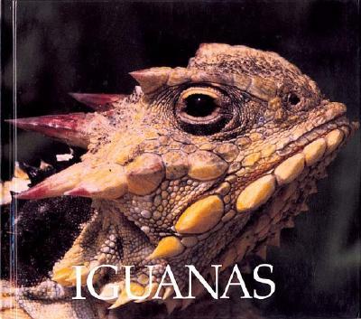 Image for Iguanas (Naturebooks: Reptiles and Amphibians)