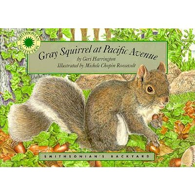 Image for Gray Squirrel at Pacific Avenue (Smithsonian's Backyard)