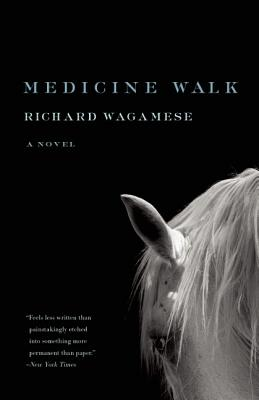 Image for MEDICINE WALK A NOVEL