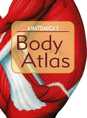 Image for Anatomica's Body Atlas