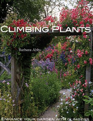 Image for Climbing Plants: Enhance Your Garden with Climbers