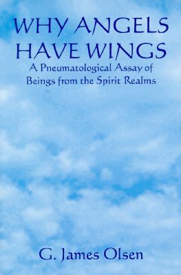 Image for Why Angles Have Wings: A Pneumatological Assay of Beings of the Spirit Realms