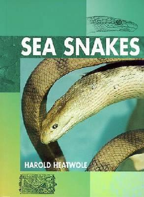 Image for Sea Snakes