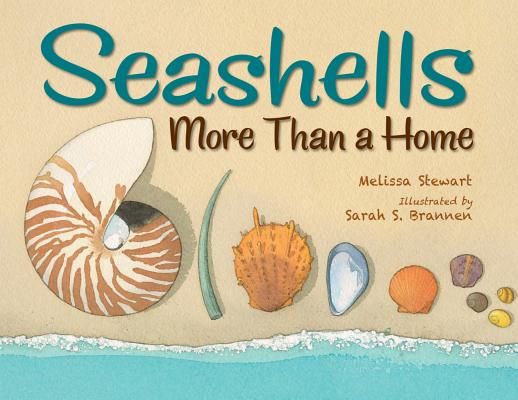 Image for Seashells: More Than a Home