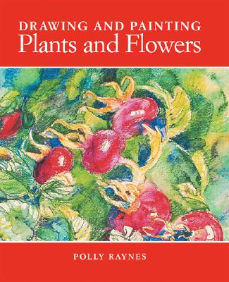 Drawing and Painting Plants and Flowers, Raynes, Polly