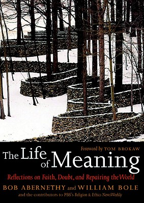 "Image for ""The Life of Meaning: Reflections on Faith, Doubt, and Repairing the World"""