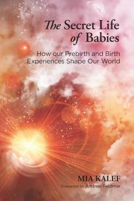 Image for The Secret Life of Babies: How Our Prebirth and Birth Experiences Shape Our World