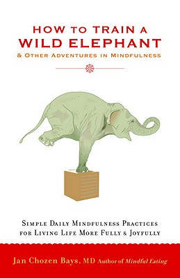 Image for How to Train a Wild Elephant: And Other Adventures in Mindfulness