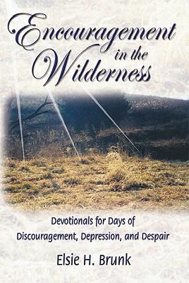Encouragement in the Wilderness: Devotionals for Days of Discouragement, Depression, and Despair, Brunk, Elsie H.