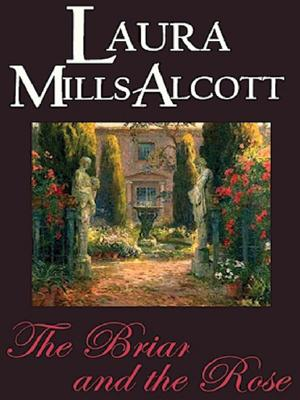 Image for The Briar And The Rose