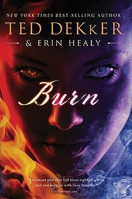 Image for BURN A NOVEL