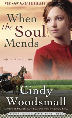 Image for When the Soul Mends: Book 3 in the Sisters of the Quilt Amish Series
