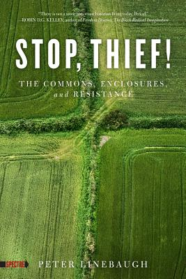 Image for Stop, Thief!: The Commons, Enclosures, and Resistance (Spectre)