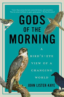 Image for Gods of the Morning: A Bird's-Eye View of a Changing World
