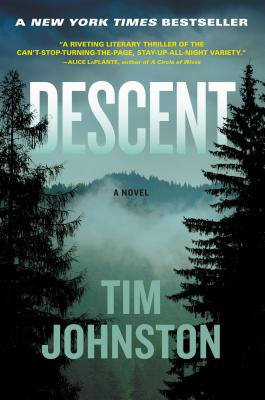 Image for Descent A Novel
