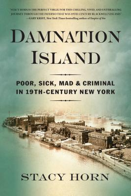 Image for Damnation Island: Poor, Sick, Mad, and Criminal in 19th-Century New York