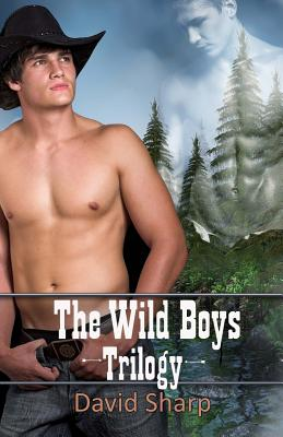 Image for Wild Boys Trilogy, The