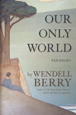 Image for Our Only World: Ten Essays