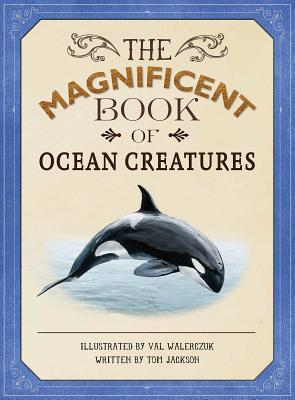 Image for The Magnificent Book of Ocean Creatures