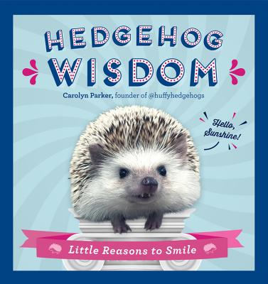 Image for Hedgehog Wisdom: Little Reasons to Smile