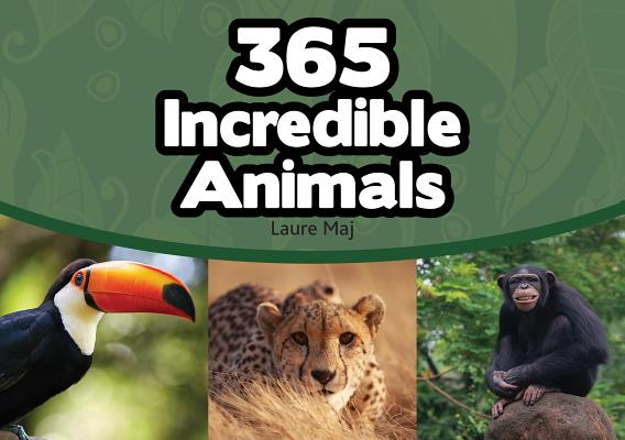 Image for 365 Incredible Animals