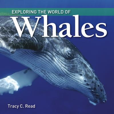 Image for Exploring the World of Whales