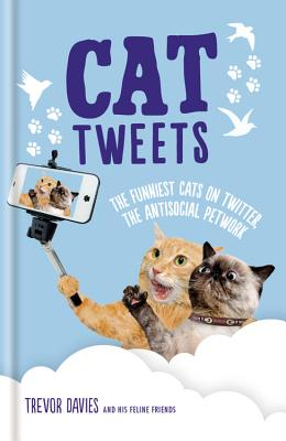 Image for Cat Tweets