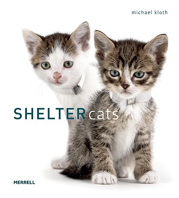 Image for Shelter Cats