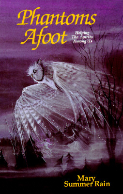 Image for Phantoms Afoot: Helping the Spirts Among Us (No-Eyes)