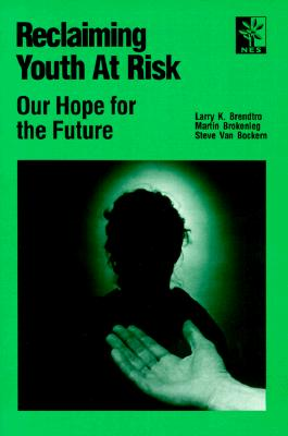 Image for Reclaiming Youth at Risk: Our Hope for the Future
