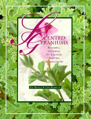 Image for Scented Geraniums